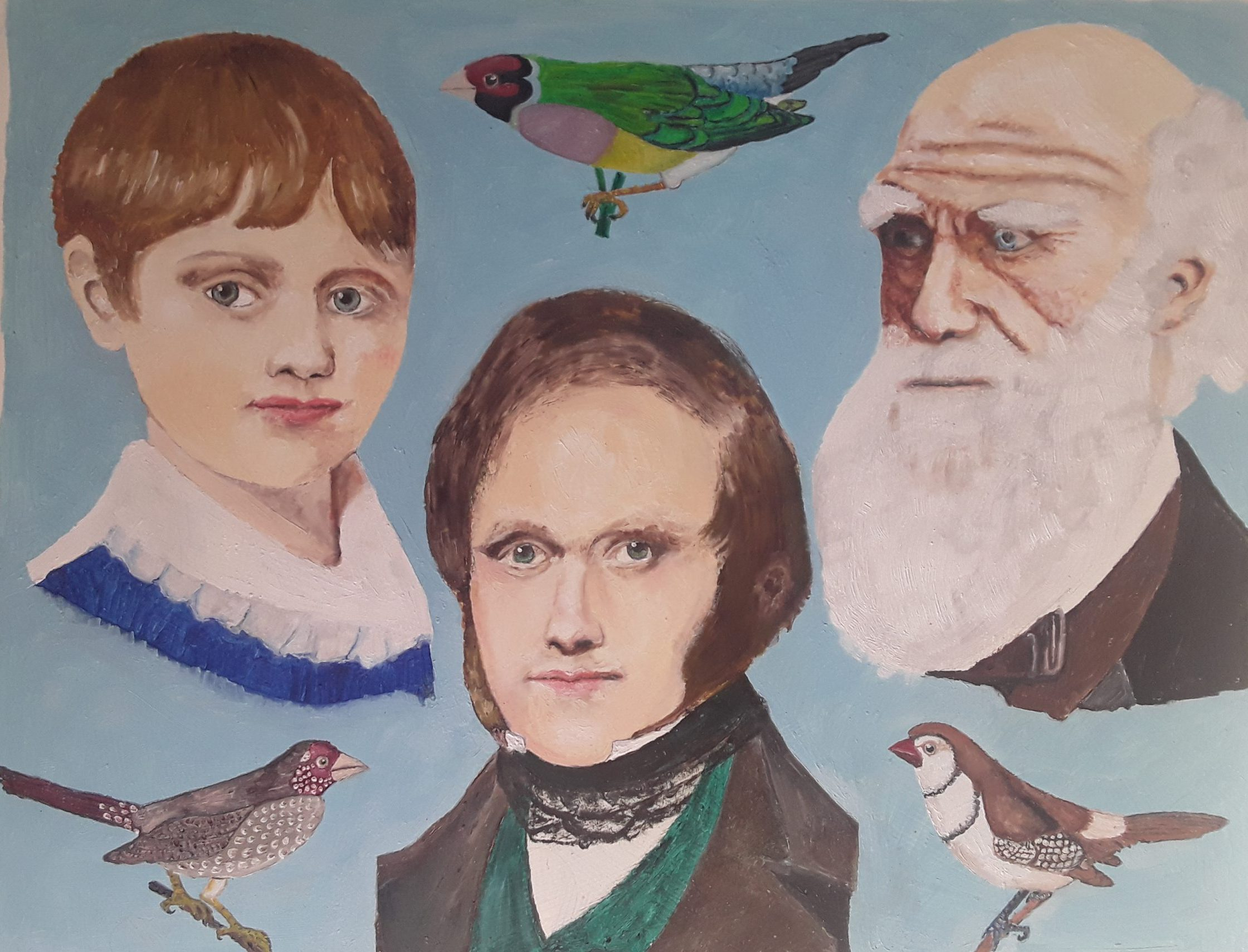 Charles's Darwins Finches